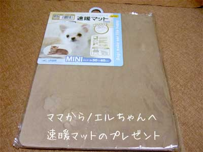 20081031_1.jpg