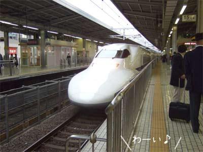 20081117_2.jpg