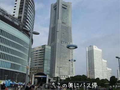 20081117_4.jpg
