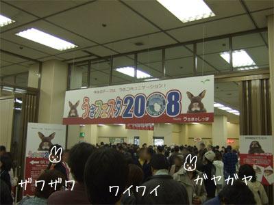 20081117_5.jpg
