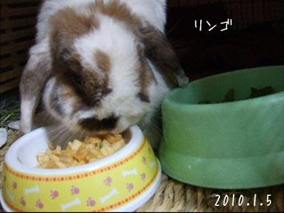20100109_3.jpg