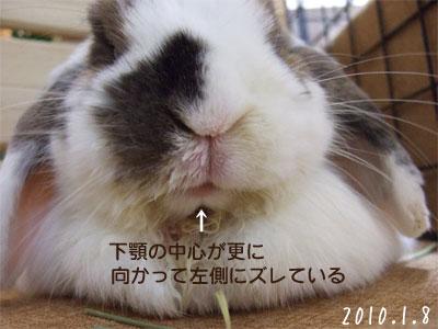 20100110_6.jpg