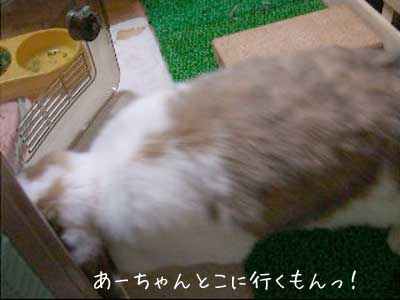 20100111_2.jpg