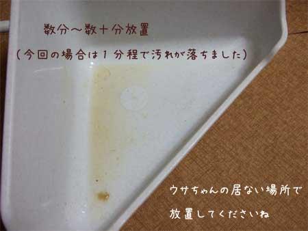 20100828_4.jpg