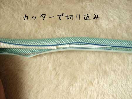 20101119_5.jpg