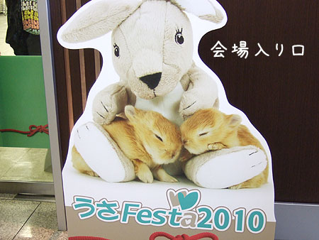 20101129_2.jpg