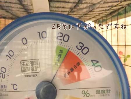 20110614_7.jpg