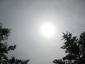 2011-06-14-2.jpg