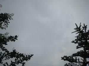 2011-06-15-1.jpg