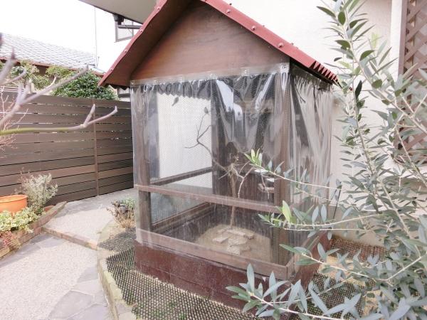 秋海 鳥小屋 DIY