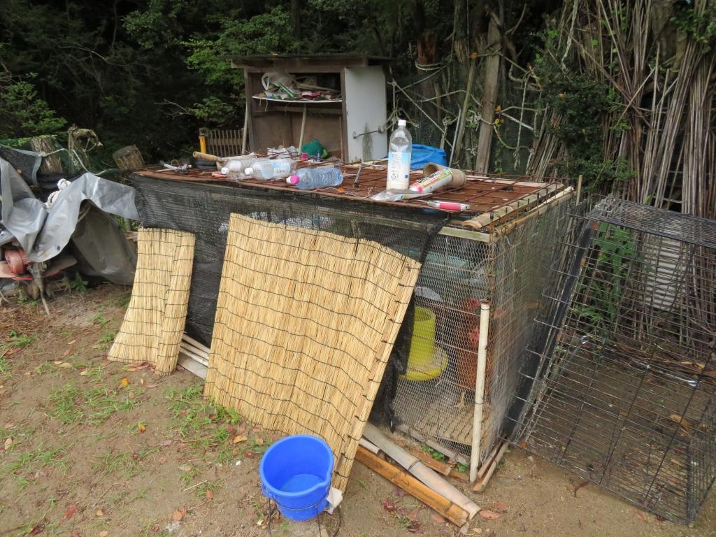 鶏小屋 DIY秋海