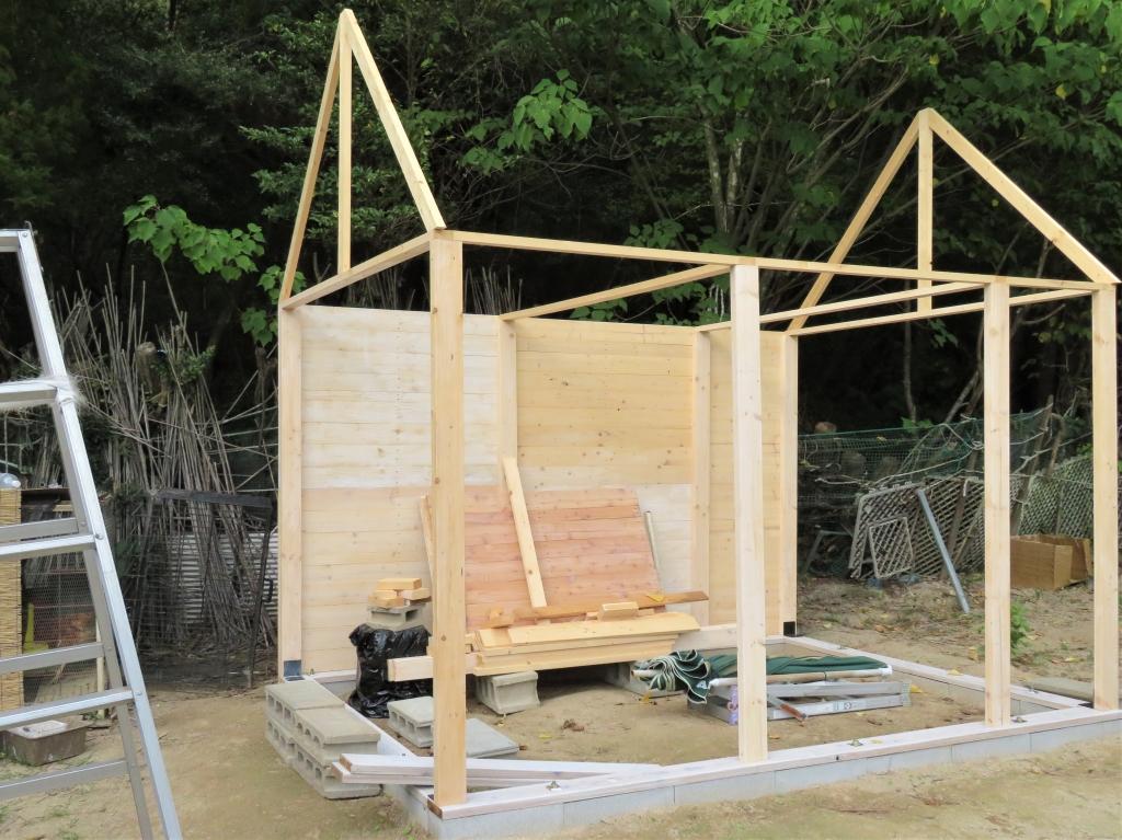 鶏小屋 DIY 秋海