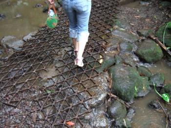 マノアの滝川を渡る