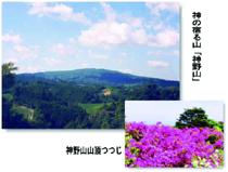 フォレストパーク神野山/山の写真
