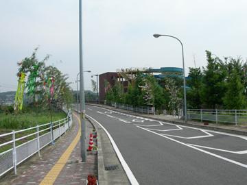 大和川七夕まつり/写真