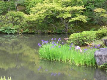 東大寺 依水園