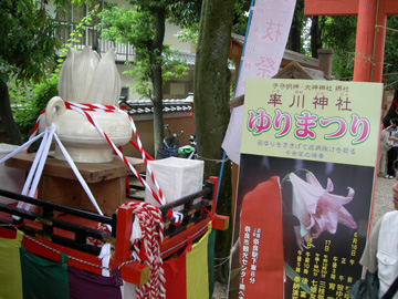 率川神社ゆり祭