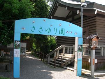 大神神社 ささゆり園