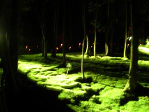 秋篠寺 十五夜の宴