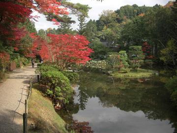 円成寺200811