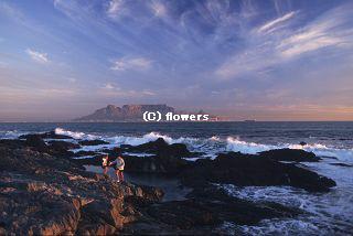 Capetown_2_320C.jpg