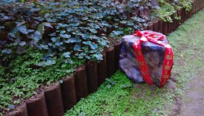 庭の石_copy.jpg