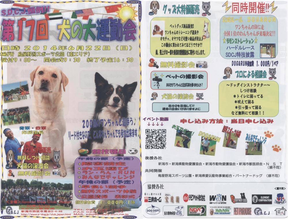 犬の大運動会