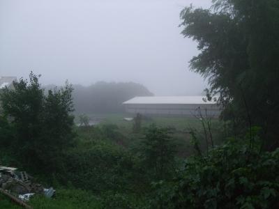 霧の現場?