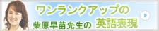 banner_shibahara.jpg
