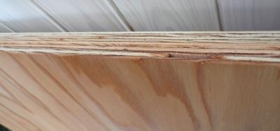 木看板 合板側面