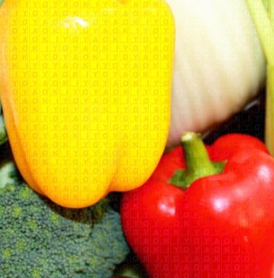 野菜写真 ロゴ入り アップ
