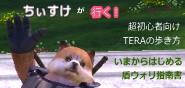 ちぃすけ.jpg