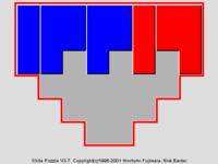 Polyomino Sliding Block Puzzles