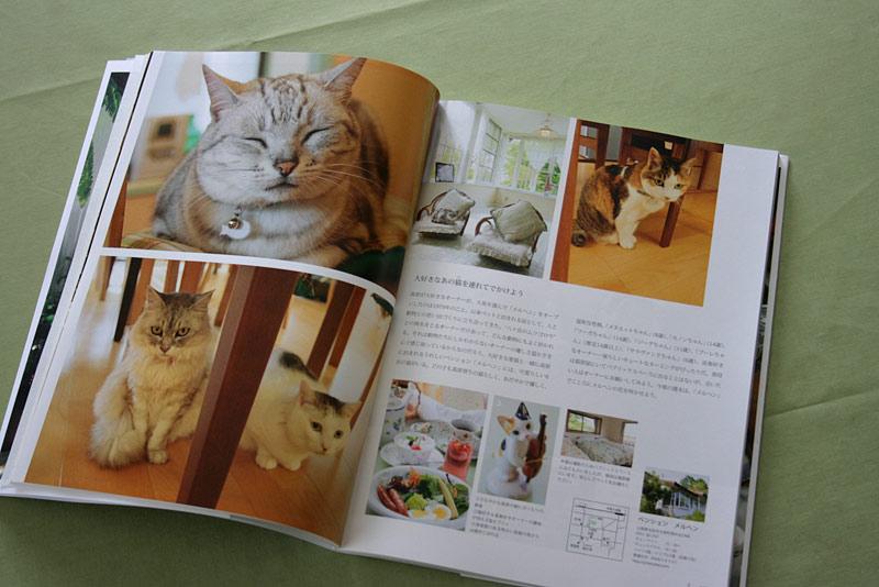 うちのニャンコを取材していただいた雑誌「猫カフェめぐり」旅情編1