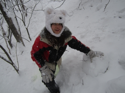 白熊の出没