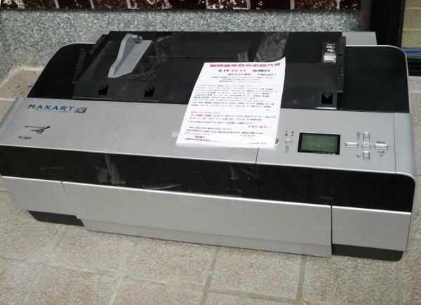 P1100761.JPG