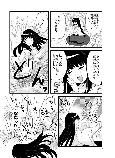 千年姫暁光前編10