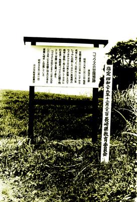 コックス甘藷栽培の地