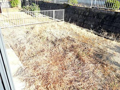 耕作前の荒れ放題の庭