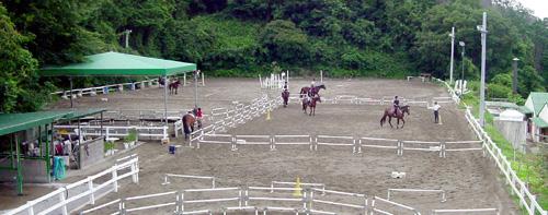 乗馬クラブの馬場