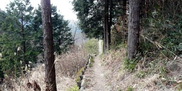 石切場への道.jpg
