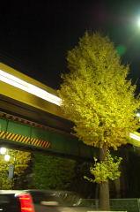 2011/09/18-04