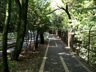 多摩湖自転車道13.1km