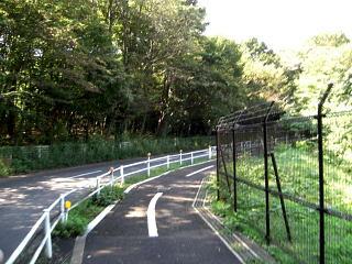 多摩湖自転車道13.2km