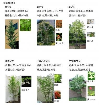 植栽11.jpg