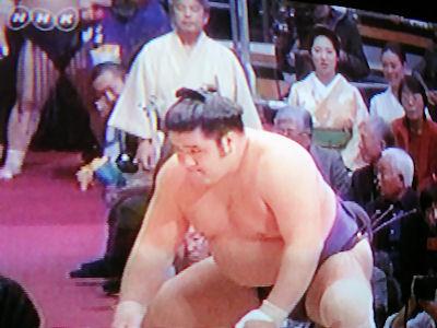 相撲 九州場所 01