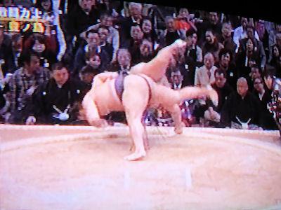 相撲 九州場所 07