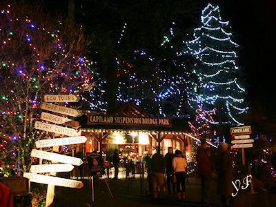 キャピラノ吊り橋 冬の夜 01