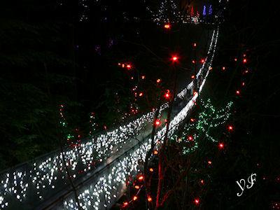キャピラノ吊り橋 冬の夜 02