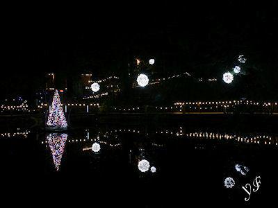 キャピラノ吊り橋 冬の夜 04